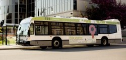 View our Transit page