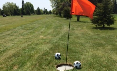 soccer balls beside hole with flag