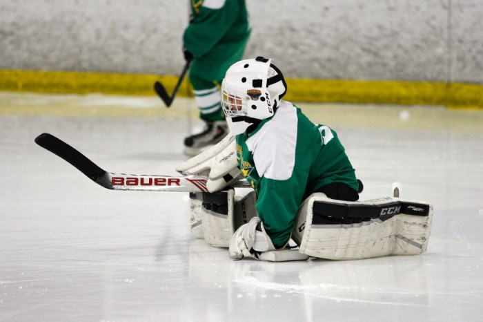 Goalie blocking a shot