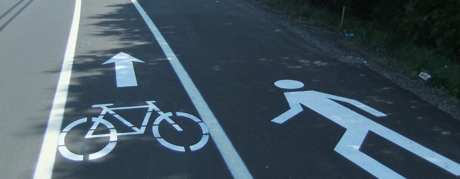 image of bike lane on road